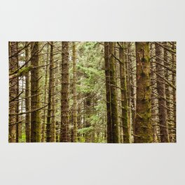 Old Growth Forest Photography Print Rug