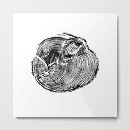 Scotts Pine Metal Print