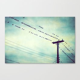 Teal Birds on Wire Photography, Turquoise Bird Wires, Aqua Black Nature Flock Canvas Print