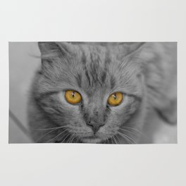 Gray Kitten with Yellow Eyes Rug