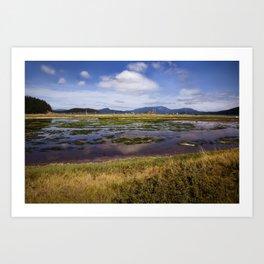 Marsh, Lopez Island, WA Art Print
