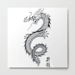 Chinese traditional dragon and signs Metal Print