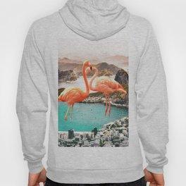 Collage, Flamingo, City, Creative, Nature, Modern, Trendy, Wall art Hoody