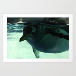 Under the Surface Art Print