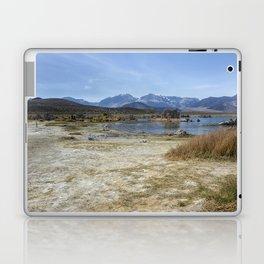Mono Lake Tufa, No. 4 Laptop & iPad Skin