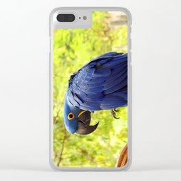 Pretty Boy Clear iPhone Case