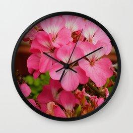 Pink Geranuims Wall Clock