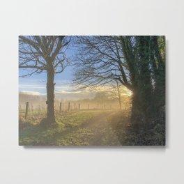 Mist through the trees Metal Print