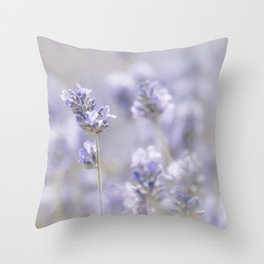 Sweet Lavender Throw Pillow