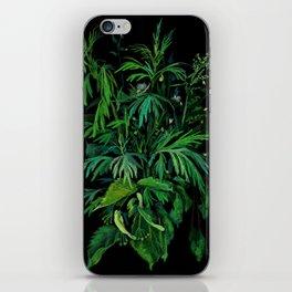 Green & Black, summer greenery iPhone Skin