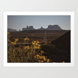 Monument Valley Flowers Art Print