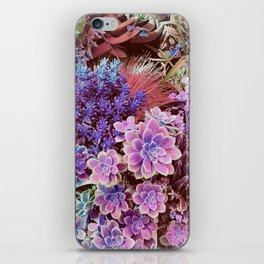 Succulent Garden View iPhone Skin
