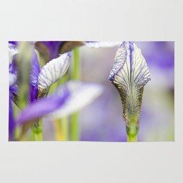 Flight of Butterflies Iris Rug
