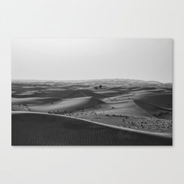Black and White Hot Desert Canvas Print
