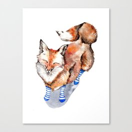 Smiling Red Fox in Blue Socks Canvas Print