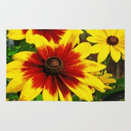 Flower | Flowers | Gaillardia Flower Garden | Nature Rug
