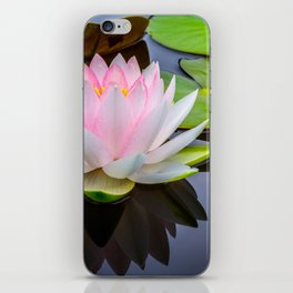 Pink Lotus & Green Lily Pads On A Jet Black Pond iPhone Skin