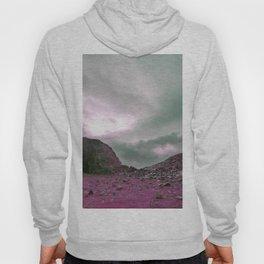 Pink Norway - Norwegian Lapponian Gate Hoody