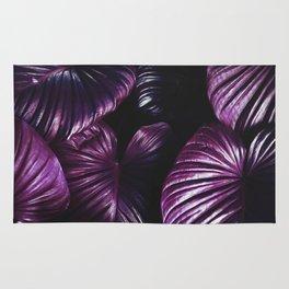 soft purple Rug