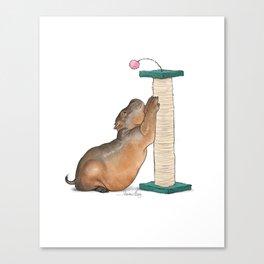 HippoCat at His Post Canvas Print