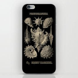 """Prosobranchia"" from ""Art Forms of Nature"" by Ernst Haeckel iPhone Skin"
