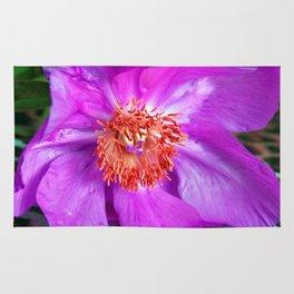 Violet Blossom - Leo Look  Rug