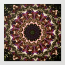 /mnclr01 Canvas Print