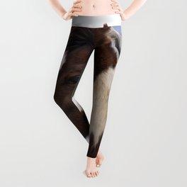 Tri-Colored Horse Leggings