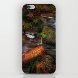 Colours of Autumn in a Brecon stream iPhone Skin