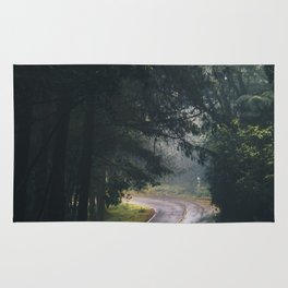 GREY - CONCRETE - ROAD - DAYLIGHT - JUNGLE - NATURE - PHOTOGRAPHY Rug
