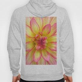 Pink and Yellow Dahlia Flower / Nature Macro Photography Hoody