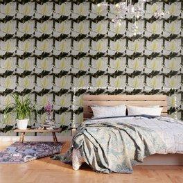 Butterfly tree or Bauhinia variegata Wallpaper