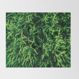 Botanical Gardens - Evergreen #939 Throw Blanket