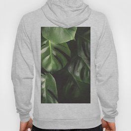 Monstera Leaves Hoody