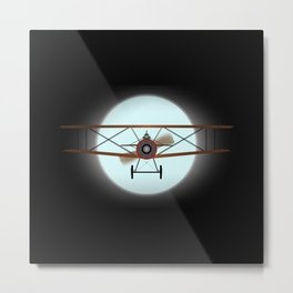 Flying by Night Metal Print
