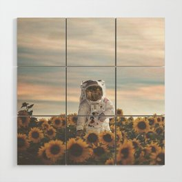 The Sunflower Galaxy, Messier 63 Wood Wall Art