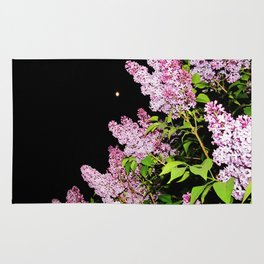 Lilacs at Night Rug