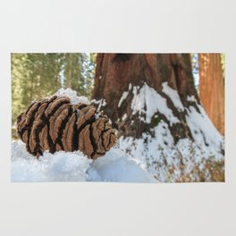 Sequoia Cone in Snow Rug