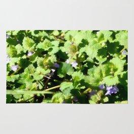 Ground Ivy 07 Rug