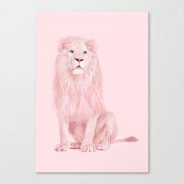 ALBINO LION Canvas Print