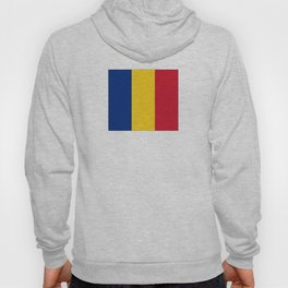flag of romania Hoody