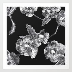 Flower Scratchboard Art Print