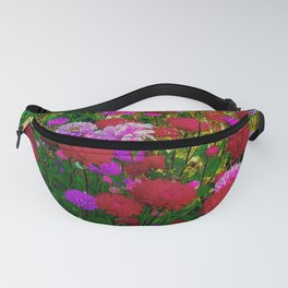 Aster and rainbow Fanny Pack