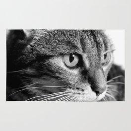 cat look Rug
