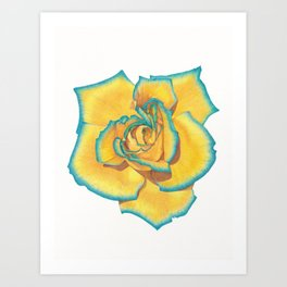 Yellow and Turquoise Rose Art Print