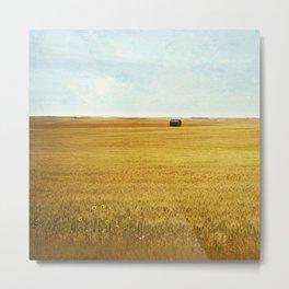 Missing Harvest Metal Print