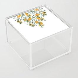 A Bit of Spring and Sushine Trailing Oranges Acrylic Box
