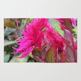 Magenta Celosia Tropical Flower Rug