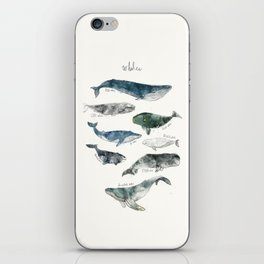 Whales iPhone Skin