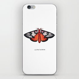 Electra Buckmoth  (Hemileuca electra) iPhone Skin
